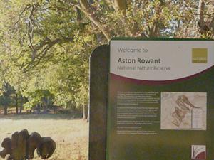 Aston Rowant